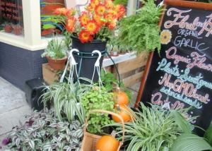 Floral & Hardy Edible Plants